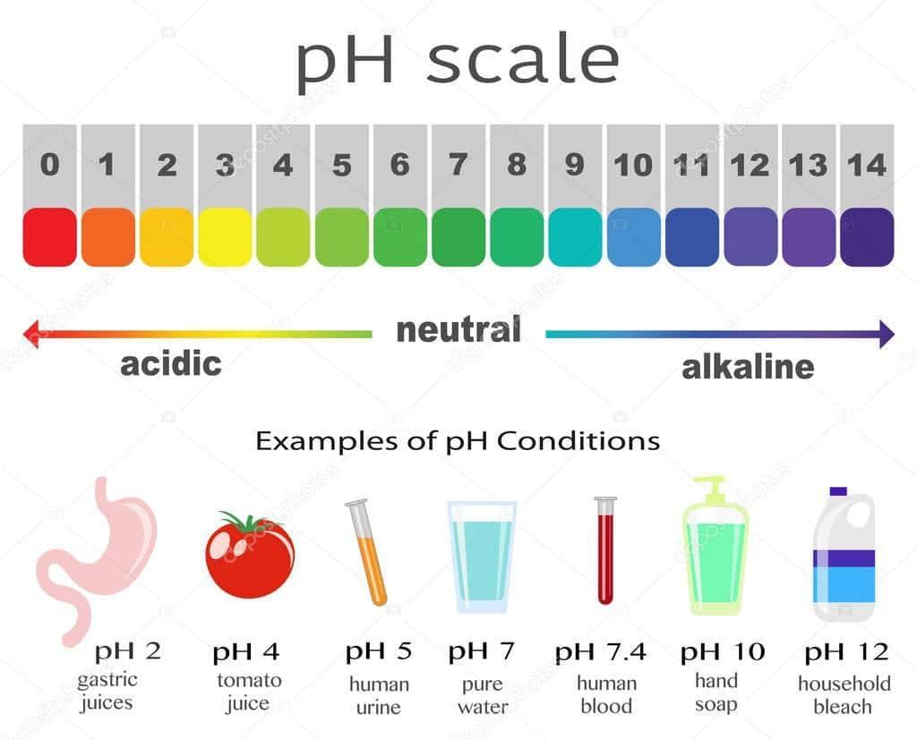 ph schaal waterionisator